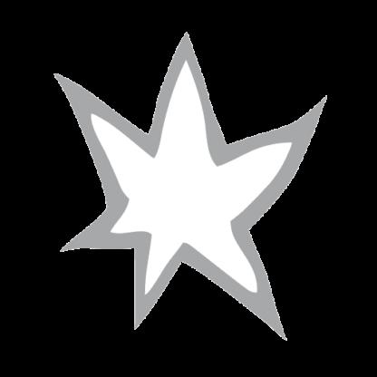 Sternen Muri Favicon